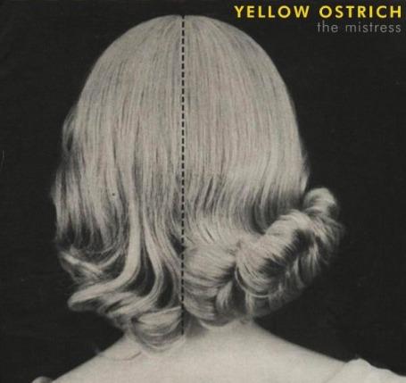 WILD FLOURISHES | Yellow Ostrich
