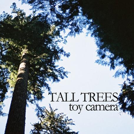 TOY CAMERA | Tall Trees