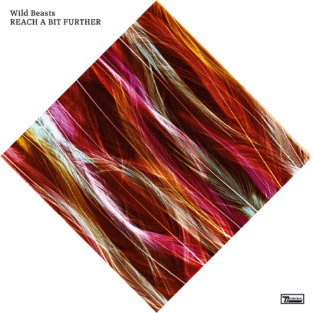 WILD BEASTS | Thankless Thing